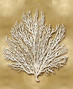 Corallo marino bianco su sfondo dorato