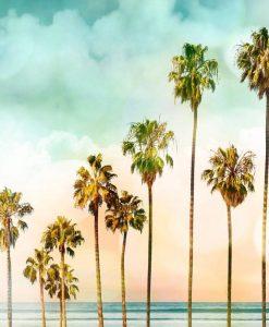 Dipinto con palme e cielo dai colori caldi