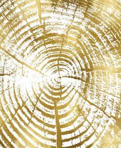 Dettaglio delle venature di un tronco dorate