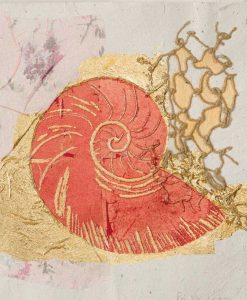 Nautilo con rete e dettagli color oro