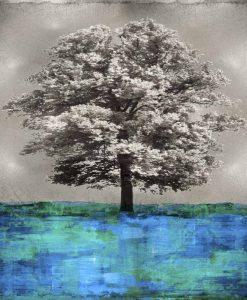 Fotografia vintage di un albero in bianco e nero con tocco di colore