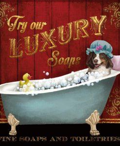 Cane bernese in una vasca da bagno