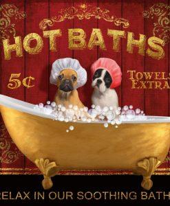 Cuccioli in un vasca da bagno