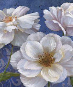 Fiori bianchi su sfondo blu