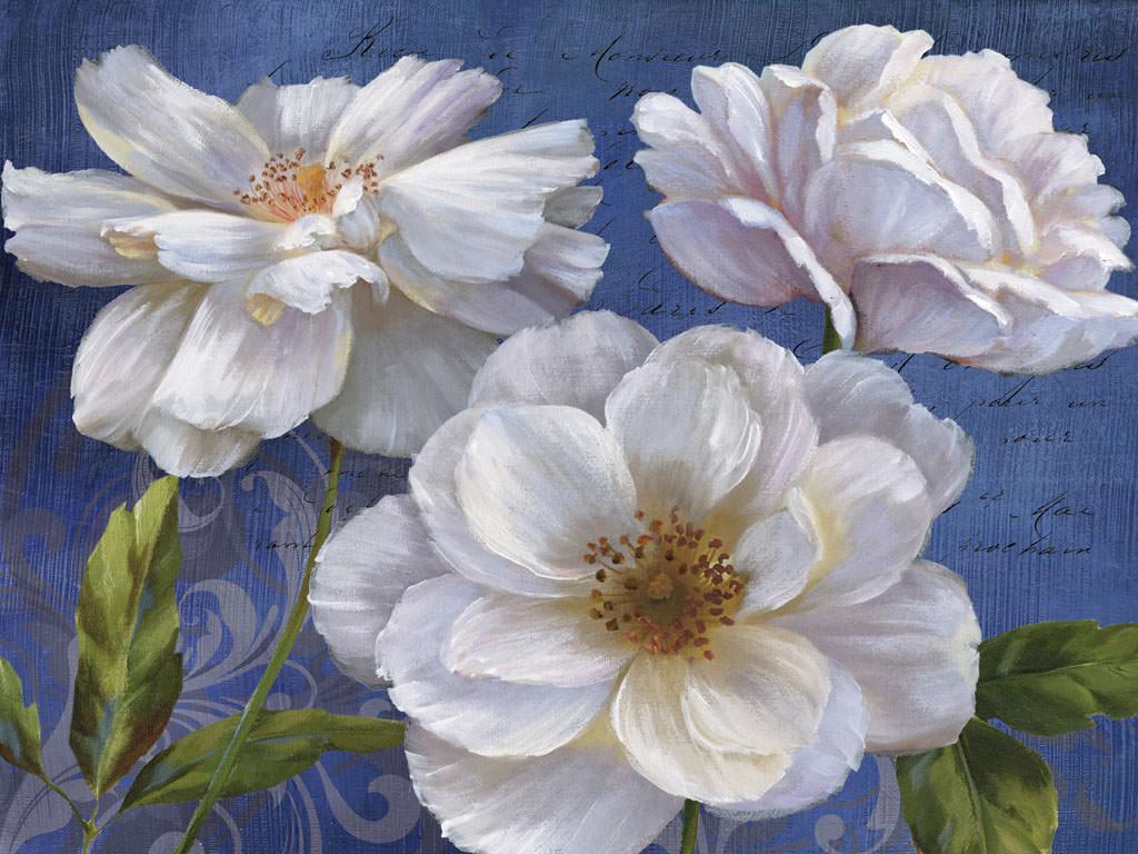 Nan Favorite Blooms Ii Artplus Vendita Stampe Su Tela Quadri E