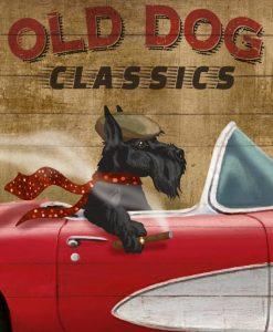 Terrier nero alla guida di una macchina vintage