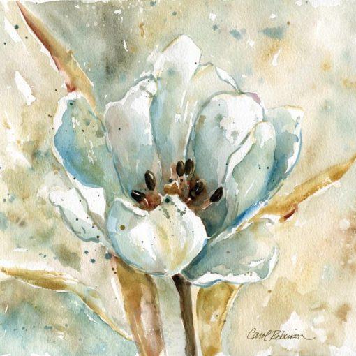 Acquerello astratto di una tulipano