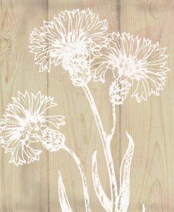 Silhouette di fiori bianchi su legno