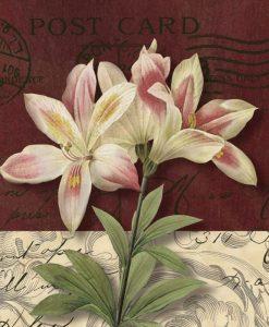 Cartolina dipinta con dei gigli