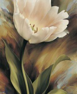 Dipinto di un tulipano bianco