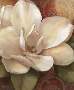 Elegante fiore di magnolia bianco