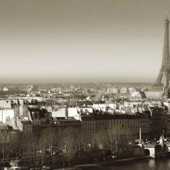 Vista di Parigi con la Tour Eiffel in lontananza