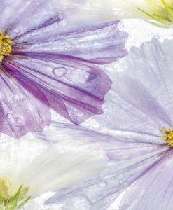 Dipinto di fiori viola nel ghiaccio