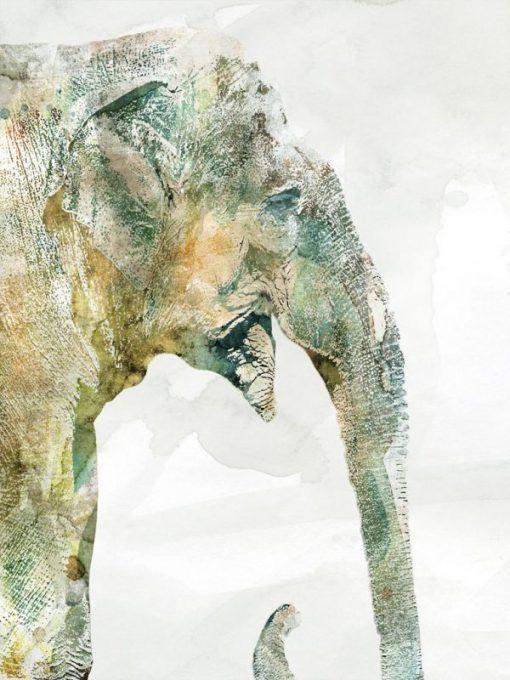 Dipinto variopinto di un elefante