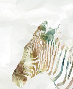 Dipinto variopinto di una zebra