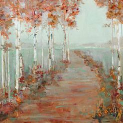 Sentiero con betulle in autunno
