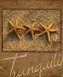 Cornice con stelle di mare e scritta