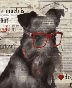 Dipinto di un cane con occhiali sovrapposto ad una pagina di giornale
