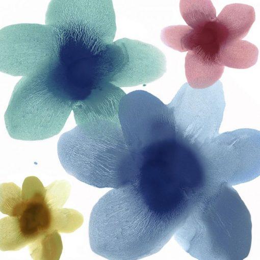 Impronte di fiori multicolore su sfondo bianco