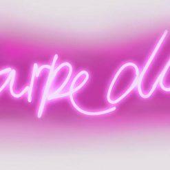 """Neon rosa con scritta in latino """"Cogli l'attimo"""""""