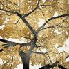 Albero dalle foglie dorate