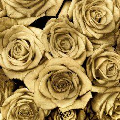 Composizione di rose dorate su sfondo nero