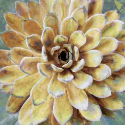 LINDSAY-BENSON-Succulent-II-pianta-grassa