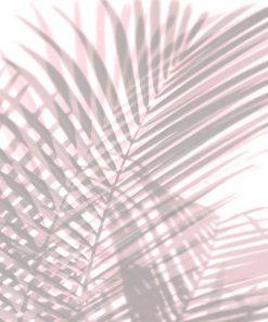 Dipinto con foglie di palma rosa con effetto sovrapposizione