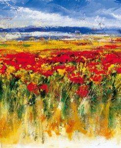 Distesa di campi fioriti