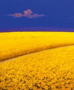 Un sentiero nei campi fioriti che porta a un villaggio