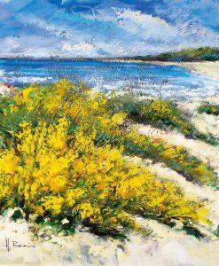 Fiori sulla via della spiaggia