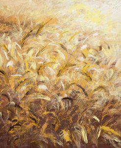Campo di grano colpito dalla brezza
