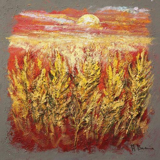 Campo con grano al tramonto