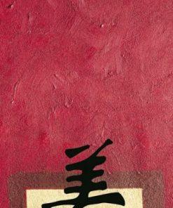 Dipinto con sfondo rosso e ideogramma cinese