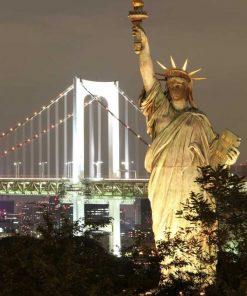 Fotografia notturna della Statua della Libertà con la città di sfondo