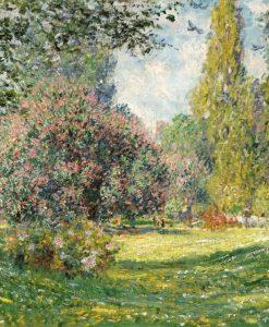Prato fiorito in un parco