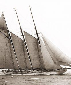 The Schooner Karina at Sail