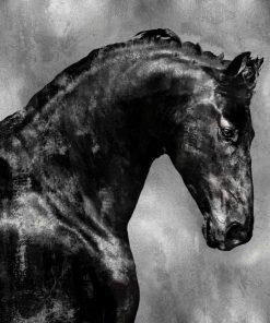 Cavallo nero su sfondo argento