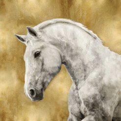 Cavallo bianco su sfondo dorato