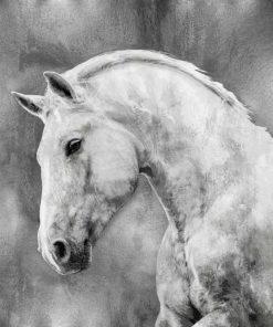 Cavallo bianco su sfondo argento