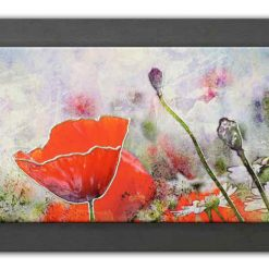 PCM1009-Beautiful Red Poppies
