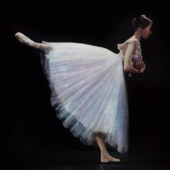 Ballerina in un romantico tutù