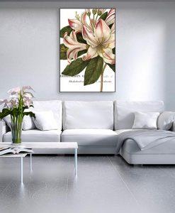 Ambientazione di un'illustrazione botanica di un rododendro