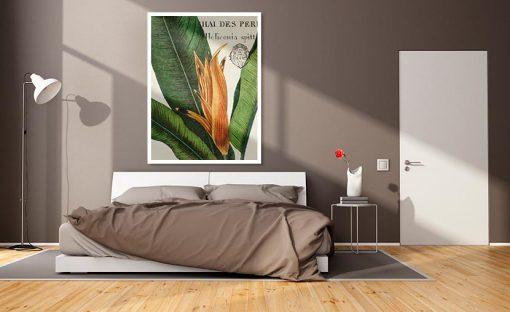 Ambientazione Illustrazione botanica di una heliconia