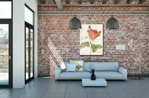 Ambientazione Illustrazione vintage rosa