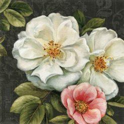 Rose damasco