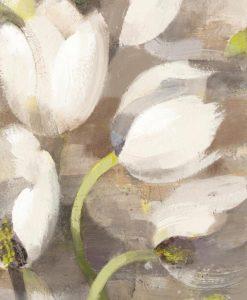 Tulipani bianchi sfumati su uno sfondo grigio