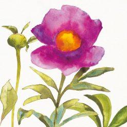 Acquerello di una composizione floreale