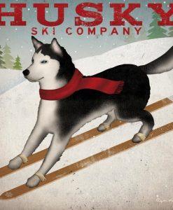 """Cane sugli sci della compagnia """"husky"""""""