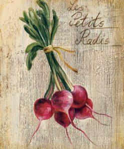 Illustrazione di ravanelli su legno